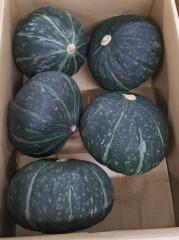 かぼちゃ_002