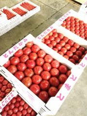 若松トマト3