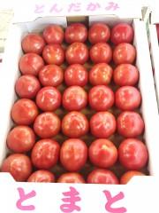 若松トマト4